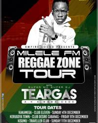 reggae-zone-tour.jpg